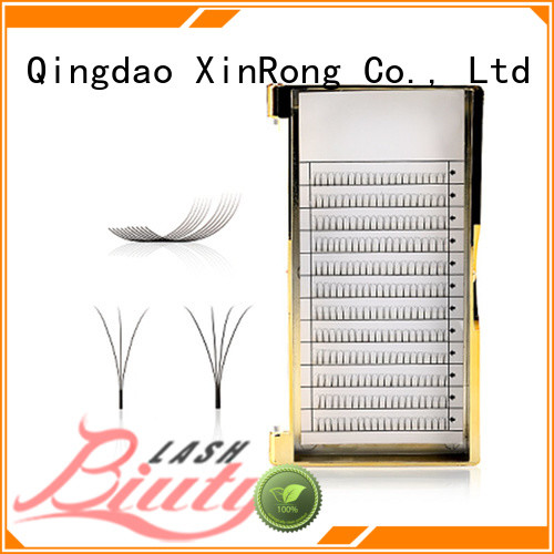 Biuty Lash wholesale extend eyelash tools Makeup